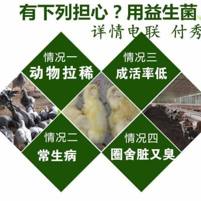 圈养羊用益生菌耐高温拌料用