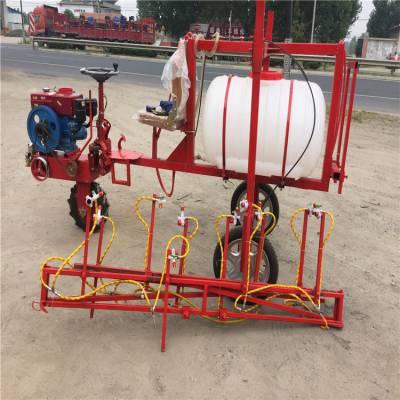 果园农药喷雾器 手推式打药机 农用自走式喷雾器