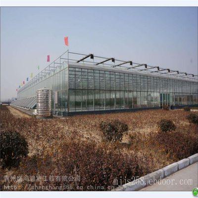 广东湛江连栋玻璃温室大棚厂家设计