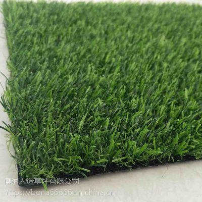供应山西幼儿园 仿真地毯草坪室内外草坪 彩虹跑道