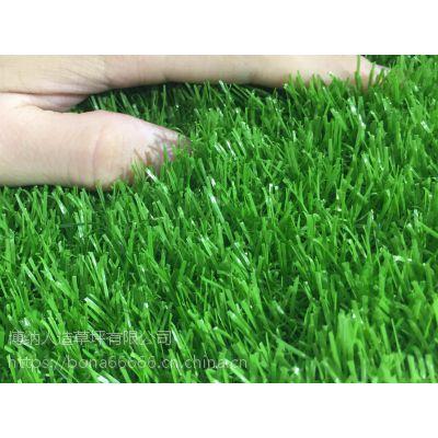 供应内蒙古幼儿园环保草坪室内外草坪彩虹跑道