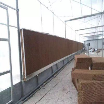 花卉薄膜温室大棚的价格是多少 盛鸿生产定制设计