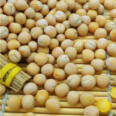 供应美亚泰凯6sxz-128dc 专业生产优质黄豆色选机 产量大,效果优