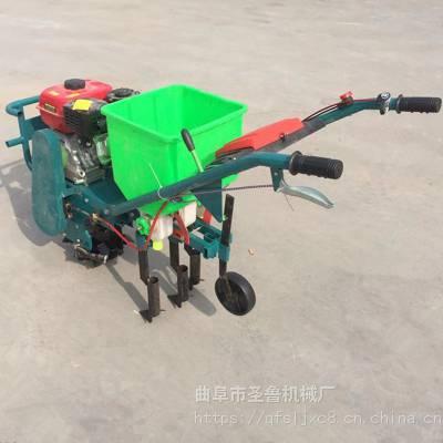 手推式汽油播种机 粮食种植专用播种机 六行高粱施肥播种机