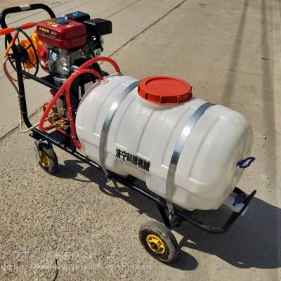 科圣 汽油拉管推车打药机 农用手推式喷雾打药机 二冲程汽油喷雾机 手推式打药机 汽油喷雾机