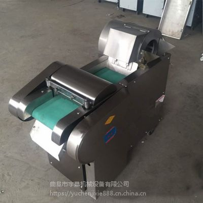 宇晨机械 出口红薯切丁机 厚薄均匀切丝切块机 食品加工肉皮冻切块机厂家