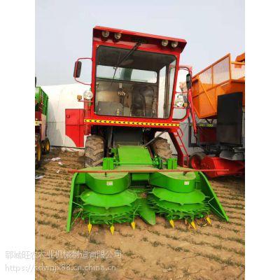 新款大型玉米秸秆青储机价格 多功能皇竹草收割回收机质量保证