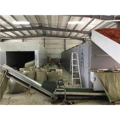 辣椒烘干生产线-国信机械-大型辣椒烘干加工生产线