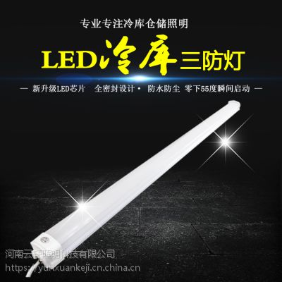 河南云轩LED冷库三防支架灯40W 全套led节能日光灯管 IP65工厂车间净化灯