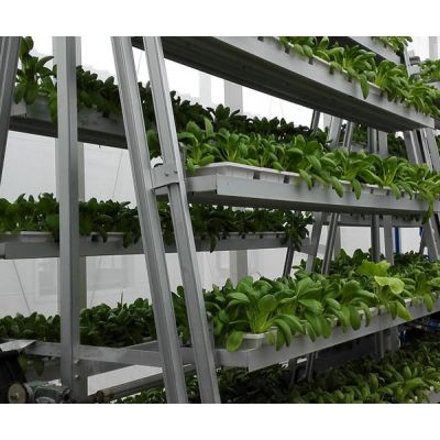 北京泓稷科技公司-水动力旋转立体栽培架