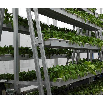a字水动力旋转蔬菜种植塔-泓稷科技公司