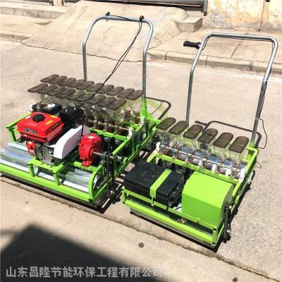 油菜芹菜播种机 株距可调播种机 手推式蔬菜精播机