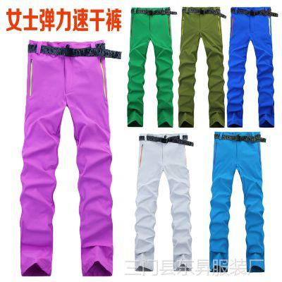 批发订做 户外服装 女士弹力速干裤 骑行裤 弹力裤 有光板169