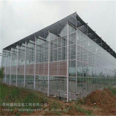 河南驻马店智能玻璃温室大棚建设设计