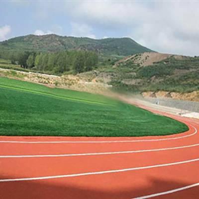 绽放草坪(图)-人工草坪足球场施工-围挡人工草皮