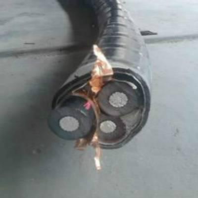 YJLV22-8.7/15KV高压铝电缆 天津电缆厂