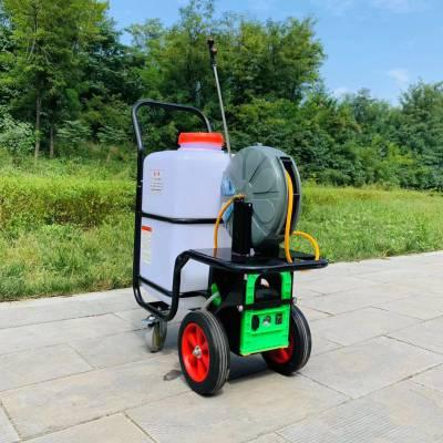 园林绿化电动打药机 水雾烟雾两用喷药机 农用高压电动喷药机厂家直销