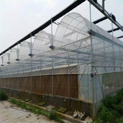 四川连栋温室大棚生产厂家 直销安装设计