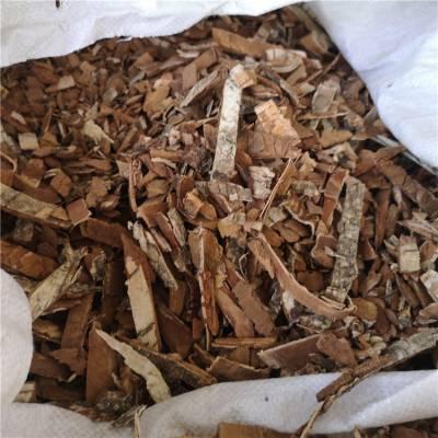 白杨树皮的药用价值 白杨树皮批发 产地直发