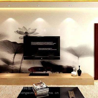 圣沃威尼斯系列液态无机硅藻泥硅藻泥圣沃硅藻泥电视墙客厅效果图