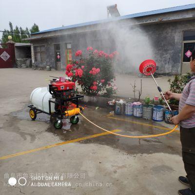 高效农田拉管式果园打药机 /汽油高压喷雾器/拉管式打药机价格