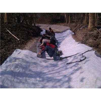 低价膨润土防水毯-低价膨润土防水毯哪里卖-唐能(优质商家)