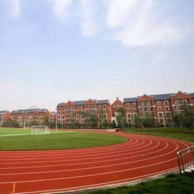 恩平休闲运动跑道,新国标塑胶跑道,学校塑胶田径地面施工-塑胶跑道球场材料厂家