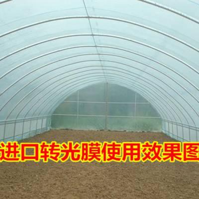 批发农业用大棚管 农业蔬菜大棚管 薄壁农业用大棚管