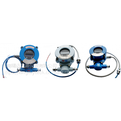 YBD200矿用隔爆型温度巡检仪 精迈仪器