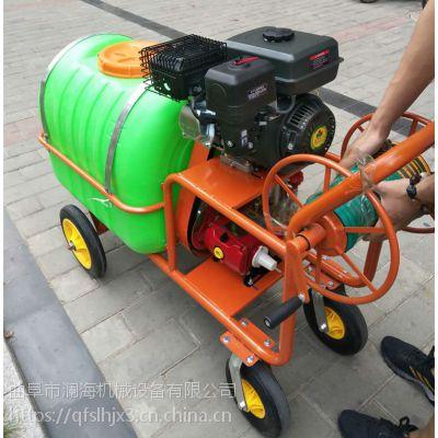 7.5马力汽油手提式稻麦防虫打药机 园林专用喷雾器机