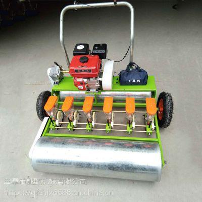 亚博国际真实吗机械 农用多行蔬菜播种机 垄上萝卜香菜单粒播种机 小型蔬菜播种机 人力手推式播种机