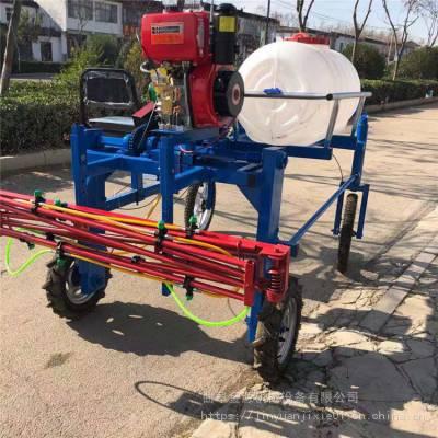 三轮车自走式打药机 座驾式玉米喷药机 四轮喷雾器厂家金源