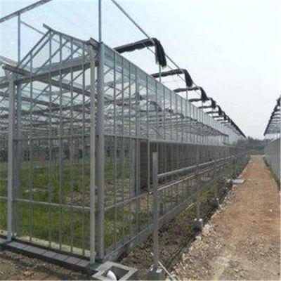 山西雁北农业温室大棚建设