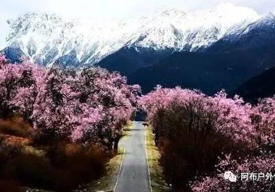 阿布与您携手去西藏(图)-滇藏线拼团旅游价格-云南到拉萨拼团