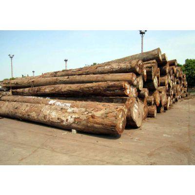 蛇口港木材贸易清关代理公司