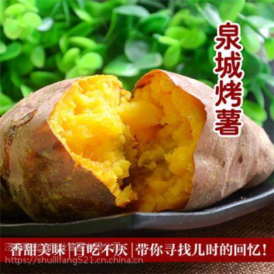 薯壹家烤薯加盟一个烤红薯店多少钱