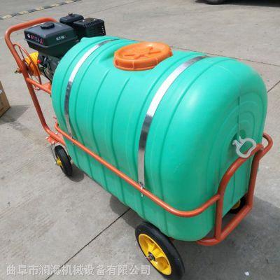 多功能汽油打药机 高压喷雾器 园林稻田喷雾器规格