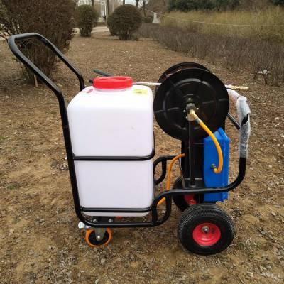 仓库车间环境消毒灭菌机 大棚杀虫除虫喷雾器 充电式手推电动喷雾器
