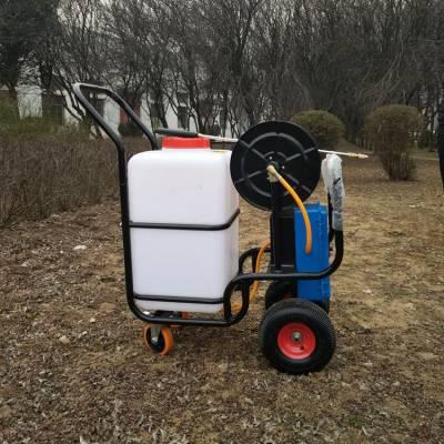 果园菜园除虫灭虫喷药机 雨季消毒防疫喷药机 垃圾箱地下车库打药机