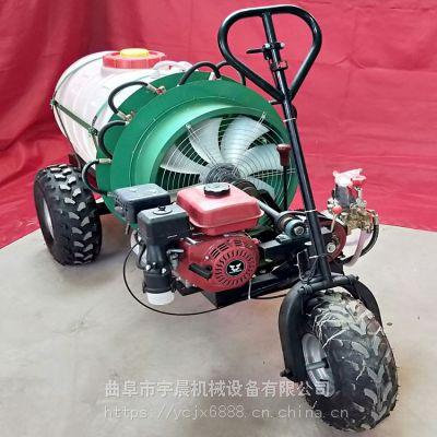 新疆葡萄风送式360°杀虫打药机价格 自走式风送葡萄园打药机 宇晨果园风送式喷雾机
