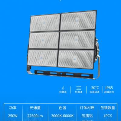 亚字牌ZY606世纪亚明1500瓦LED泛光灯