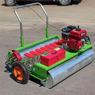 多行香菜播种机 汽油自走式蔬菜播种机 电动生菜精播机