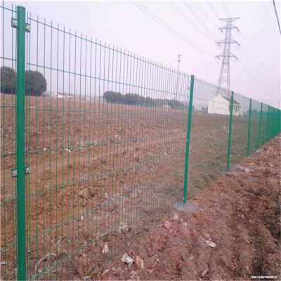 钢丝网围栏 护栏网生产厂家-安平优盾圈地防护网护栏