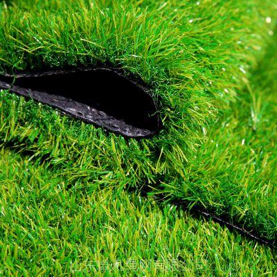 绿色无土草坪 草坪网 工地草坪网围挡 兰州草坪 人造人工草坪假草皮 环保草坪 围挡草坪草皮