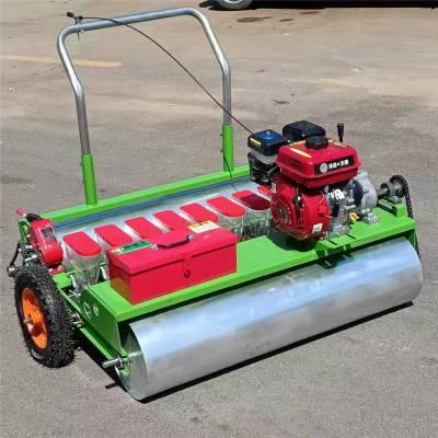 十字花科蔬菜播种机 汽油机自走式蔬菜精播机 润众
