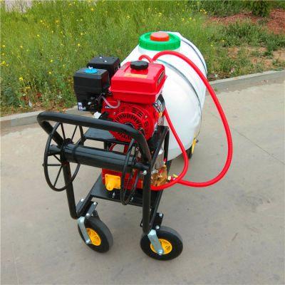 小型手推打药机 汽油高压柱塞泵喷药器 型号齐全