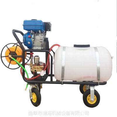 高性价比机型全自动高压喷雾器 四轮手推式喷雾机澜海
