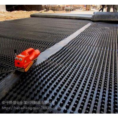 供应河南小区绿化塑料排水板车库绿化卷材排水板厂家直销