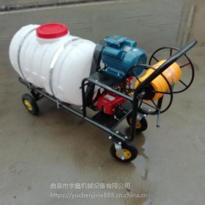 汽油高压喷雾器 猪舍消毒喷药机 宇晨汽油消毒喷雾打药机
