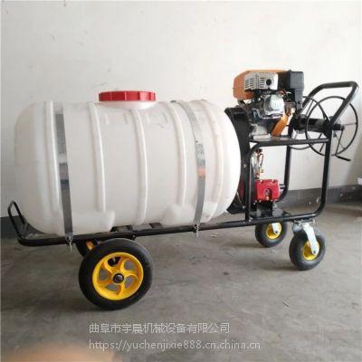 养殖场喷雾机 手推汽油喷药机 养殖场四轮手推消毒机批发